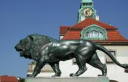Lion in the centre of the Sprudelhof